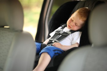 Perfect Driving Experience with a Boy sleeping